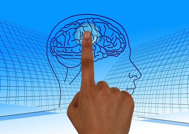 brain supplements optimal mind