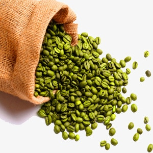 Green Coffee beans Nootropic weight loss