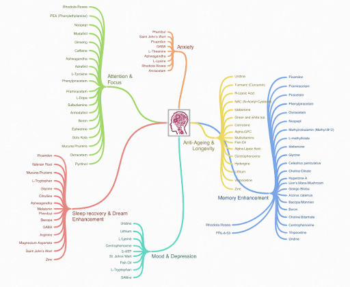 Nootropics Mind Map Icon
