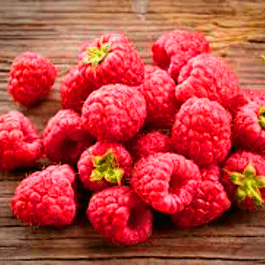 Raspberry ketones Nootropic weight loss